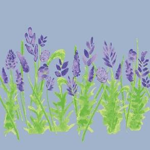 Lavender - Blue Ice