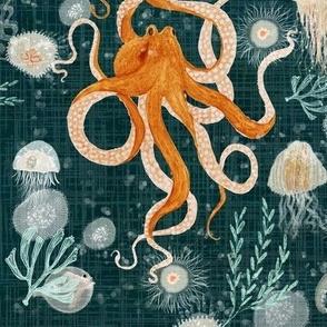 Octopus on midnight