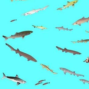 Deep Sea Sharks Scatter on cyan