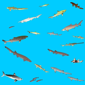 Deep Sea Sharks Scatter on sea blue (lg)