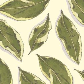 Varigated Leaves on Cream Large Scale