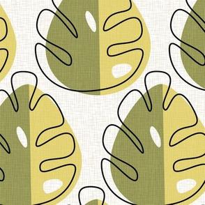 Monstera leaves_Green
