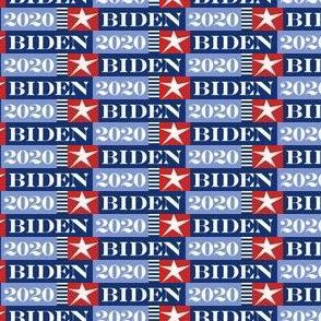 Joe Biden 2020 vote small scale