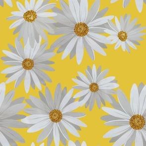 Daisy Yellow Field