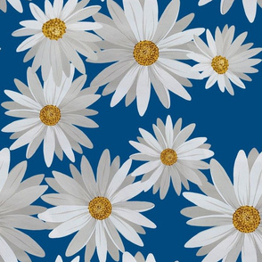 Daisy Blue Field