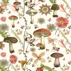 mushroom garden jumbo