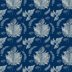 cyanotype ferns