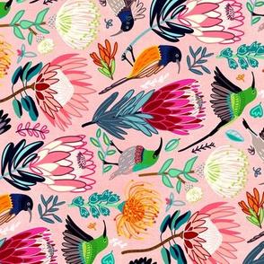 Sunbirds & Proteas (Horizontal - Large Version)