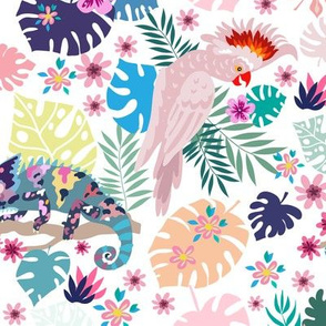 Parrot pattern 6-01