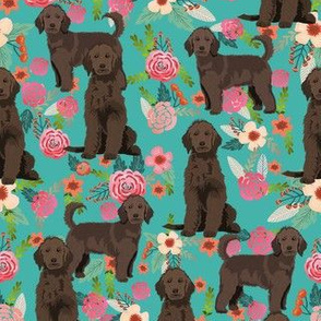 golden doodle floral fabric - chocolate - turquoise