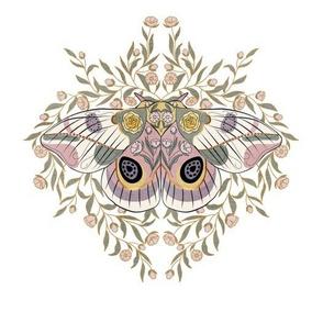 Bella Nora midnight moth