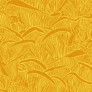 fungus_mushroom_orange_yellow