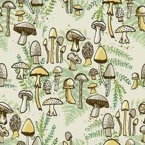 Where the Mushrooms Grow, Sm