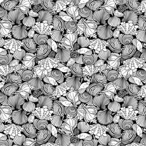 Seashells paradise black and white