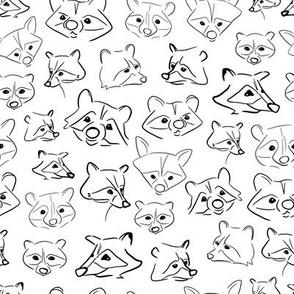 Raccoon Faces Line Art Sketch White