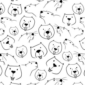 Beaver Faces Line Art Sketch White