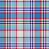 Blueberry_and_cherry_white_center_plaid