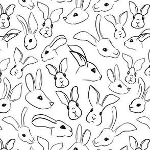 Rabbit Faces Line Art Sketch White