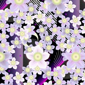 Gattacho Blossoms