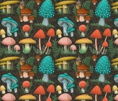 JJD-MushroomMedely