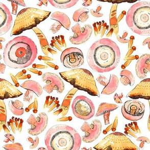 Mushroom Whimsey