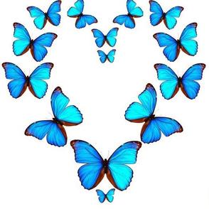 Blue Butterflies Heart