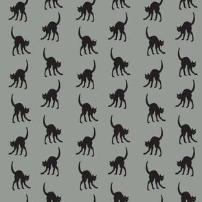 Halloween Cat Grey Background