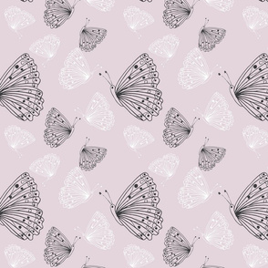 sundown butterfly