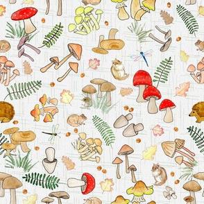Tossed Mushrooms  on Textured  White