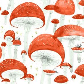 Small Mycelium Fruiting Bodies by Friztin © 2017