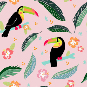 Sweet and Sassy Toucan