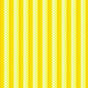 Petite yellow in yellow gradient dots