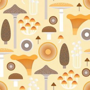 mushrooms on cream