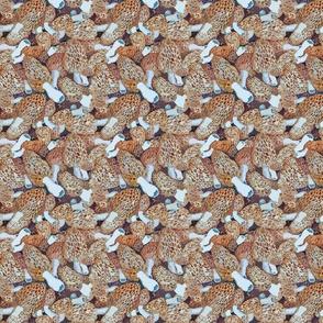 New Morel Dilemma fabric.jpg