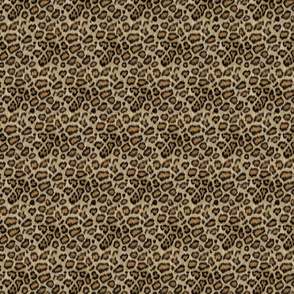 Leopard Small Scale