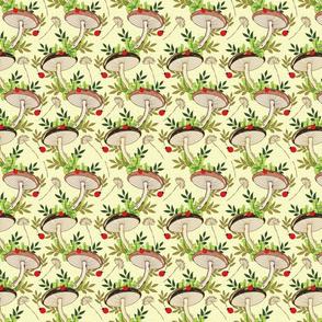 mushroom_ladybug