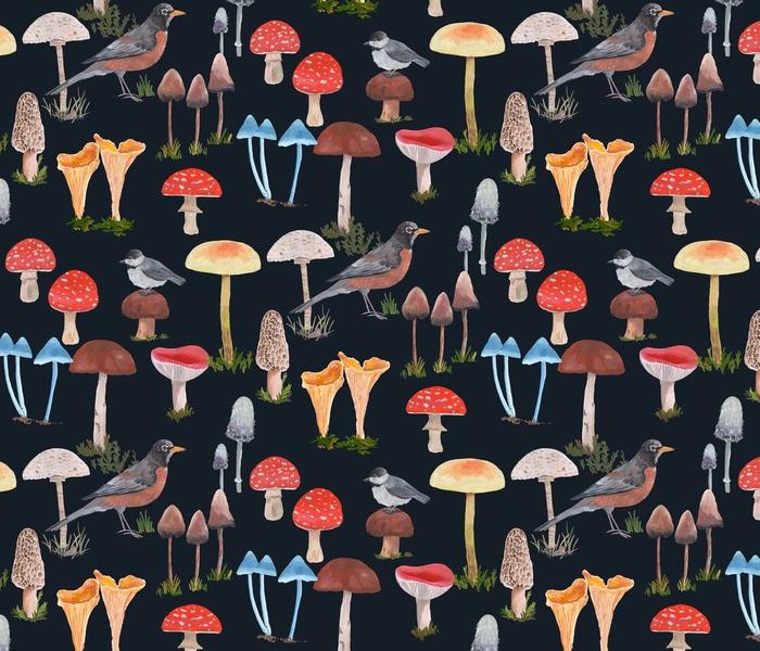 Birds and Mushrooms