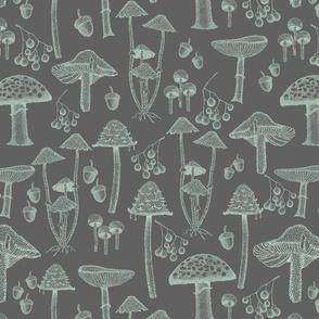 Vintage mushrooms