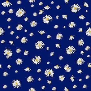 Daisy Dance  Blue
