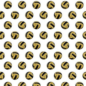 (small scale) gold and black volleyballs - LAD20BS