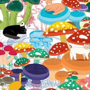 Cats in Mushroom Forest