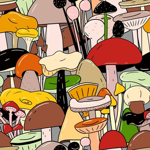 Find the false mushroom