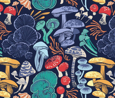 Mystical fungi // normal scale // midnight blue background multicoloured wild mushrooms