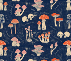 Botanical mushroom collection