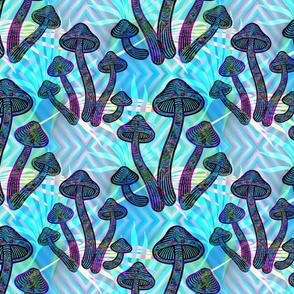 Hippy Trippy Magic Mushrooms!