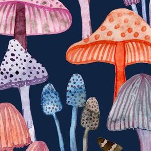wonderworld mushrooms on a dark blue. big