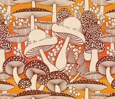 fall fungi