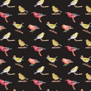 Birds Pattern 2 Dark