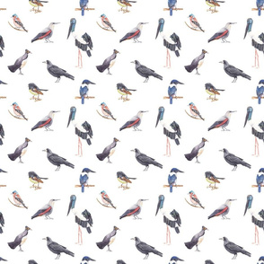 Birds Pattern 4