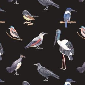 Birds Pattern 4 Dark
